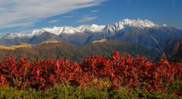 Adygea: Mountains of Delight